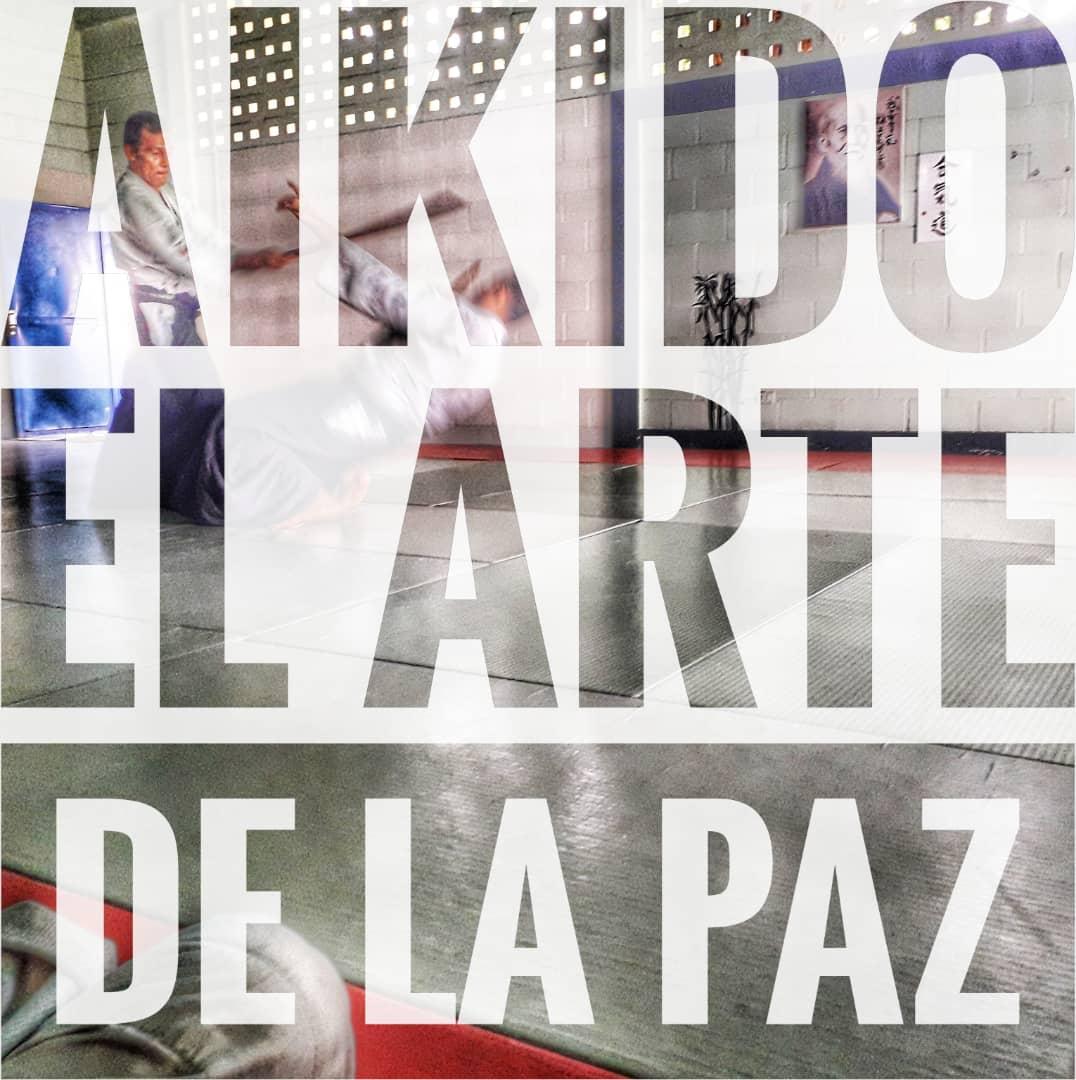 Aikido Venezuela Maracay Aragua